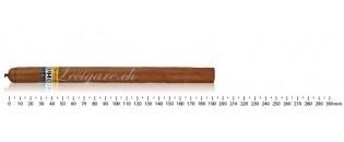 Cigar Cutter Les fines lames - Bulnesia