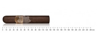 Avo 8 Assortiment Robusto - Edition limitée
