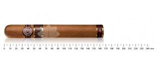 Cigar cutter Colibri V-Cut black
