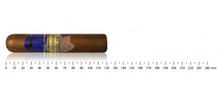 Adorini cigar case brown leather for 2-3 cigars