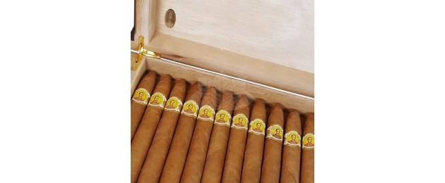 Cigar Case Corleone