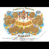 Cigares H.Upmann à la pièce ou en boite jusqu'à 50 cigares