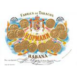 Zigarren H. Upmann - Zigarren aus Cuba einzeln oder in einer Kiste von 10 bis 25 Zigarren oder Per Stück